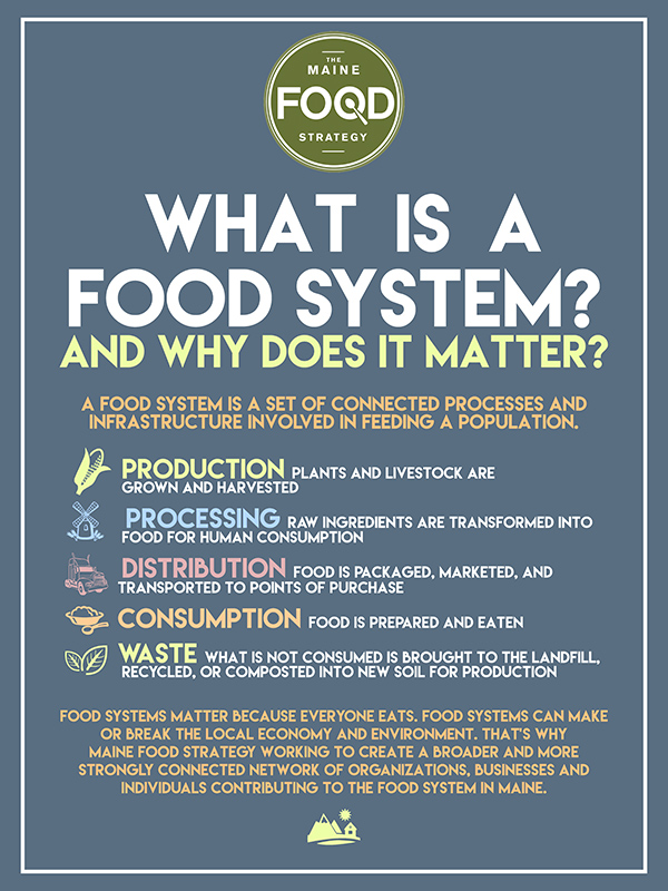 Food System Infographic