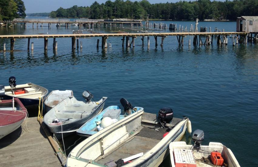 Case Study: Alliance for Maine's Marine Economy (Photo courtesy of Keri Kaczor)