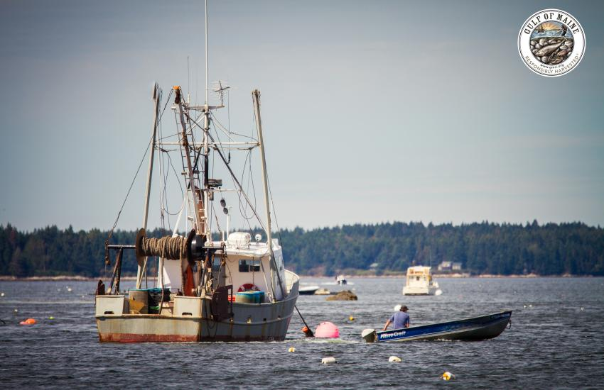 GMRI's Sustainable Seafood Program