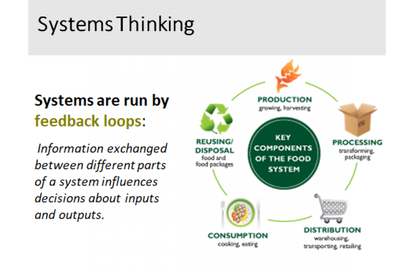 Systems Thinking: a way of thinking about complex problems